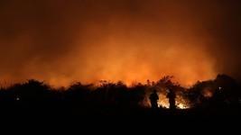 UE-Mercosul: relatório vê alto 'custo ambiental' (Amanda Perobelli / Reuters/26-8-2020)