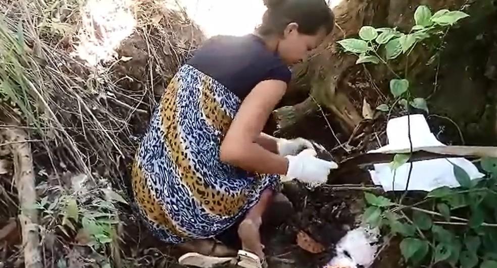 Mãe suspeita de matar e esquartejar bebê aparece em vídeo desenterrado restos mortais (Foto: Reprodução)