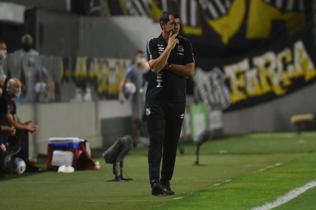 Fábio Carille durante jogo entre Santos e Athletico-PR — Foto: Ivan Storti/Santos FC