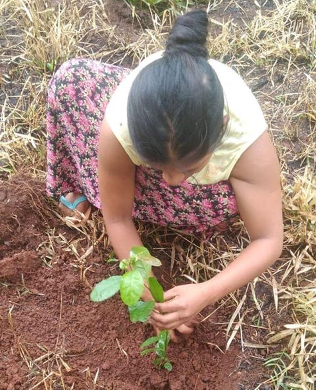 Indígena planta muda de árvore após construtora ter derrubado mata nativa em terreno na Zona Norte de SP — Foto: Reprodução/Facebook