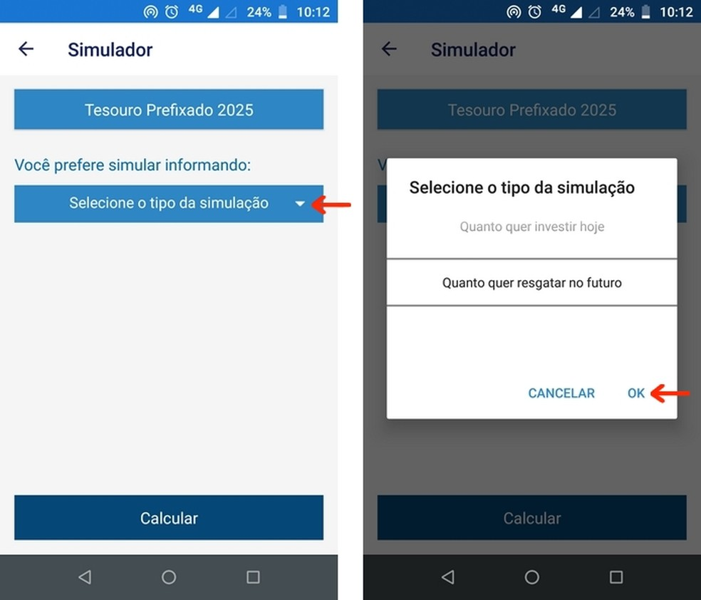 Seleção do tipo de simulação de investimento no Tesouro Direto pelo app para celular — Foto: Reprodução/Raquel Freire