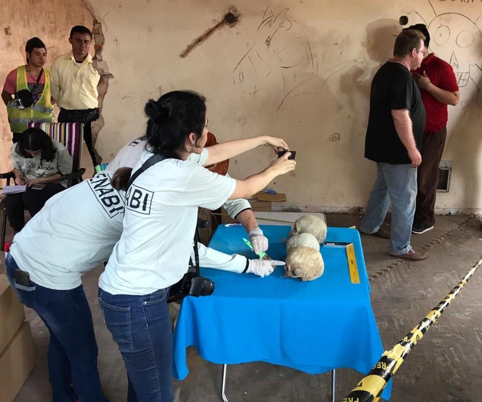 Ossadas encontradas passarão por exames em Assunção — Foto: Marcos Landim/RPC