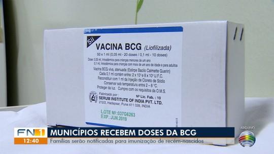 Municípios repõem vacinas BCG nos estoques