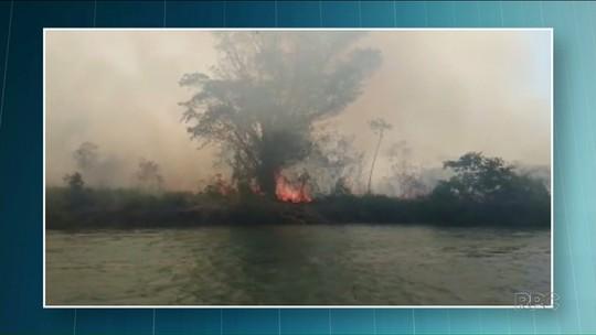 Incêndio consome 85% da Ilha Floresta, no noroeste do Paraná