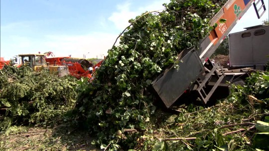 'Cidades e Soluções' mostra soluções para destinar resíduos