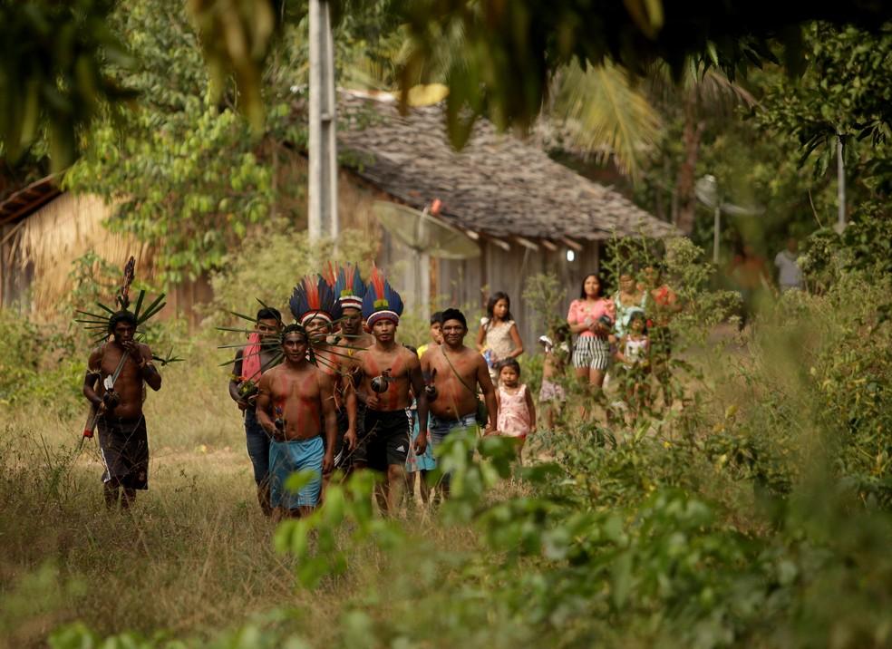 Guerreiros indígenas Tembé Tenetehara se arrumam para ritual de agradecimento. — Foto: Especial/Raimundo Paccó