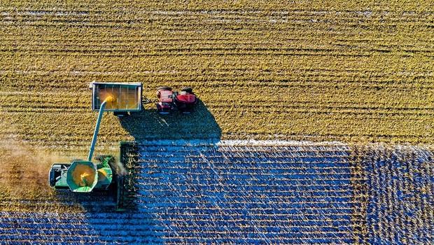 Agricultura (Foto: Pexels)