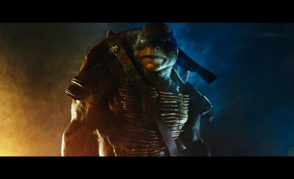 As Tartarugas Ninjas No Deviantart Gifs: Papel De Parede As Tartarugas Ninja O Filme