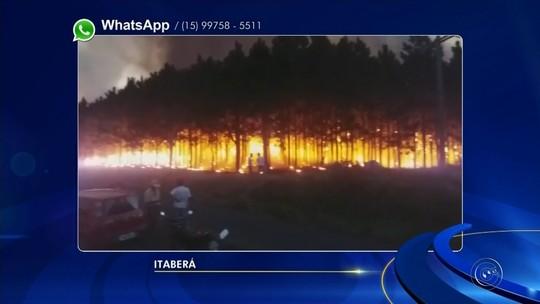 Mais de 20 casos de fogo em mato mobilizam bombeiros na região de Itapetininga