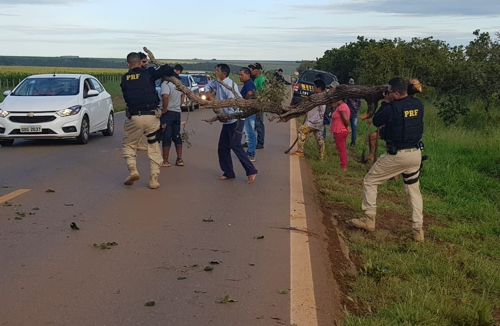 Xavantes usam galhos de árvore para fechar rodovia em MT — Foto: Reprodução/TVCA