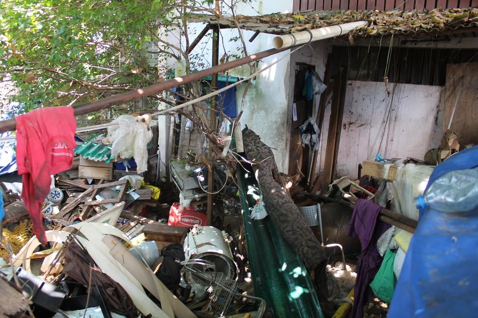 Cães estavam em meio ao lixo jogado no entorno da residência (Foto: Rickardo Marques/G1 AM)