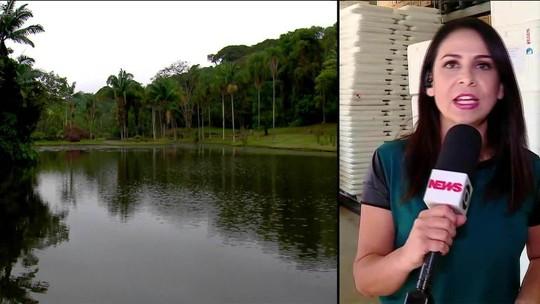 SP fecha zoológico e parques após morte de macaco por febre amarela