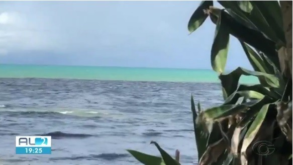 Mancha escura aparece na praia de Riacho Doce, em Maceió  - Noticias