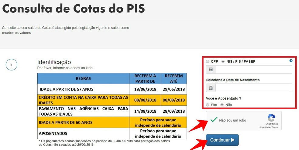 Informe CPF ou NIS para consultar saldo do PIS (Foto: Reprodução/Rodrigo Fernandes)