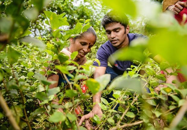 Time de universitários ajuda pequenos produtores na Índia (Foto: Divulgação)