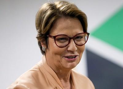 Tereza Cristina, ministra da Agricultura (Foto: Marcelo Camargo/ Agência O Globo )