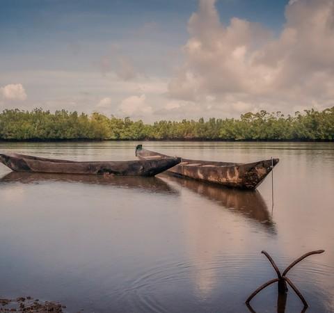 Gâmbia é único país com chance de cumprir meta do Acordo de Paris