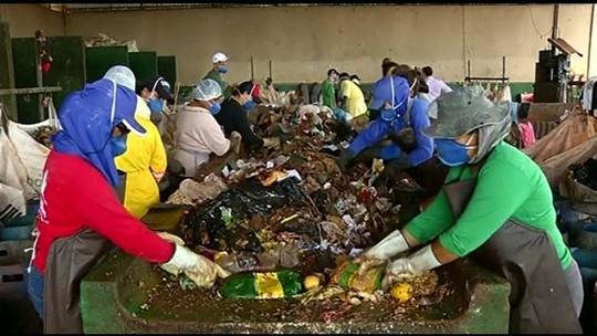 Cidade do interior de Goiás recicla mais de 80% do lixo produzido