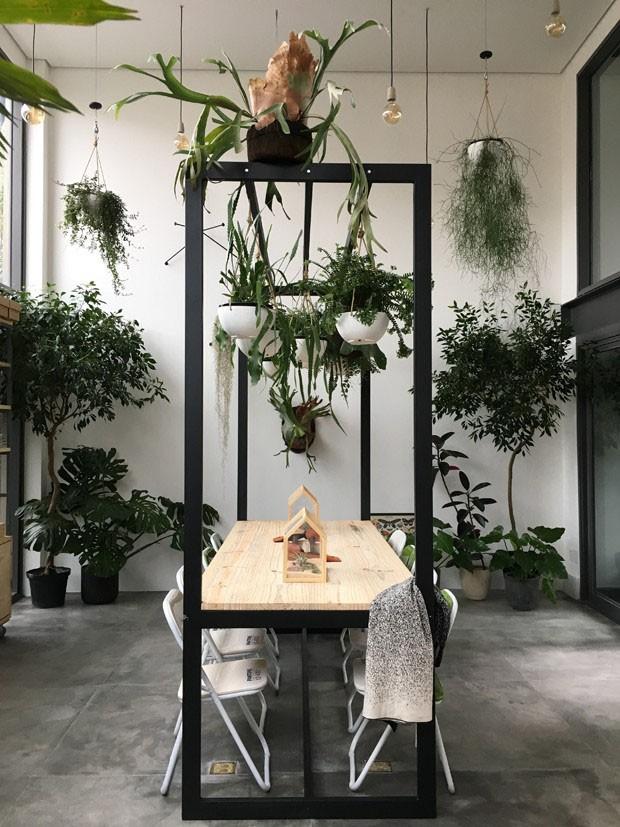 Conheça 10 lojas de plantas que valem o passeio (Foto: Divulgação)