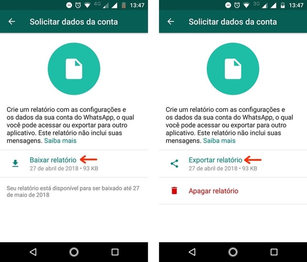 Relatório com dados da conta do WhatsApp pronto para ser baixado (Foto: Reprodução/Raquel Freire)