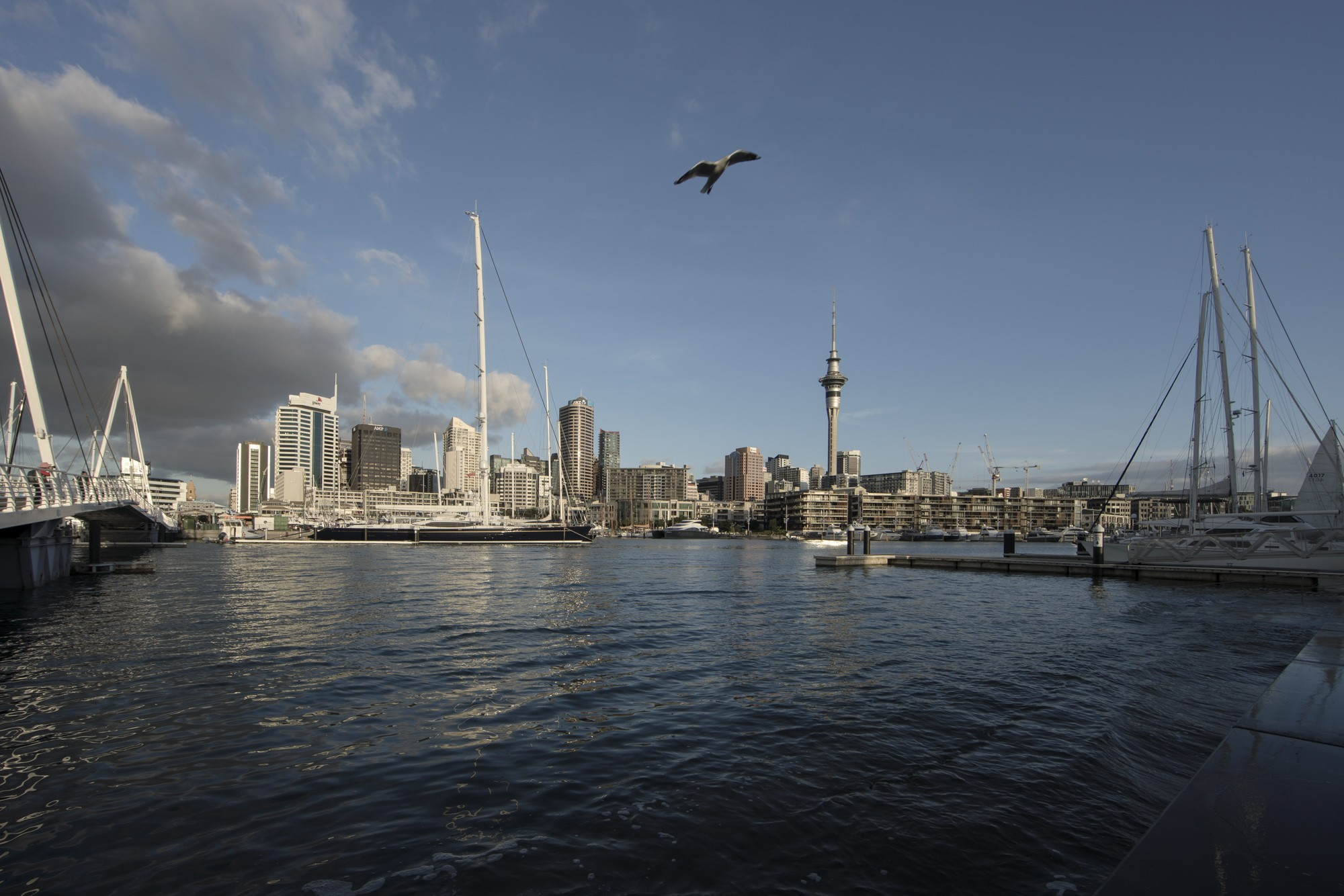 Viagem Bob Wolfenson Nova Zelândia (Foto: Divulgação)