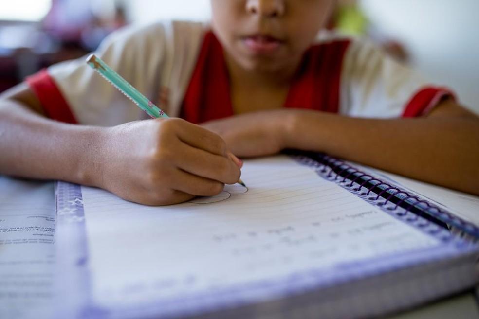 Proposta é para alunos do ensino fundamental brasileiro (Foto: Seduc-MT)