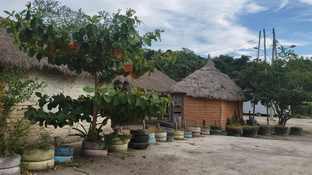 Livre da Covid-19, aldeia indígena em Maricá segue sistema rigoroso para se manter longe da doença