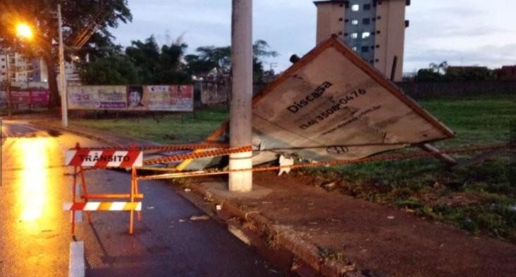 Vendaval e chuva forte derrubam árvores e causam estragos em São Carlos