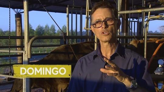 Rondônia já produz leite sem proteína que causa alergia e intolerância