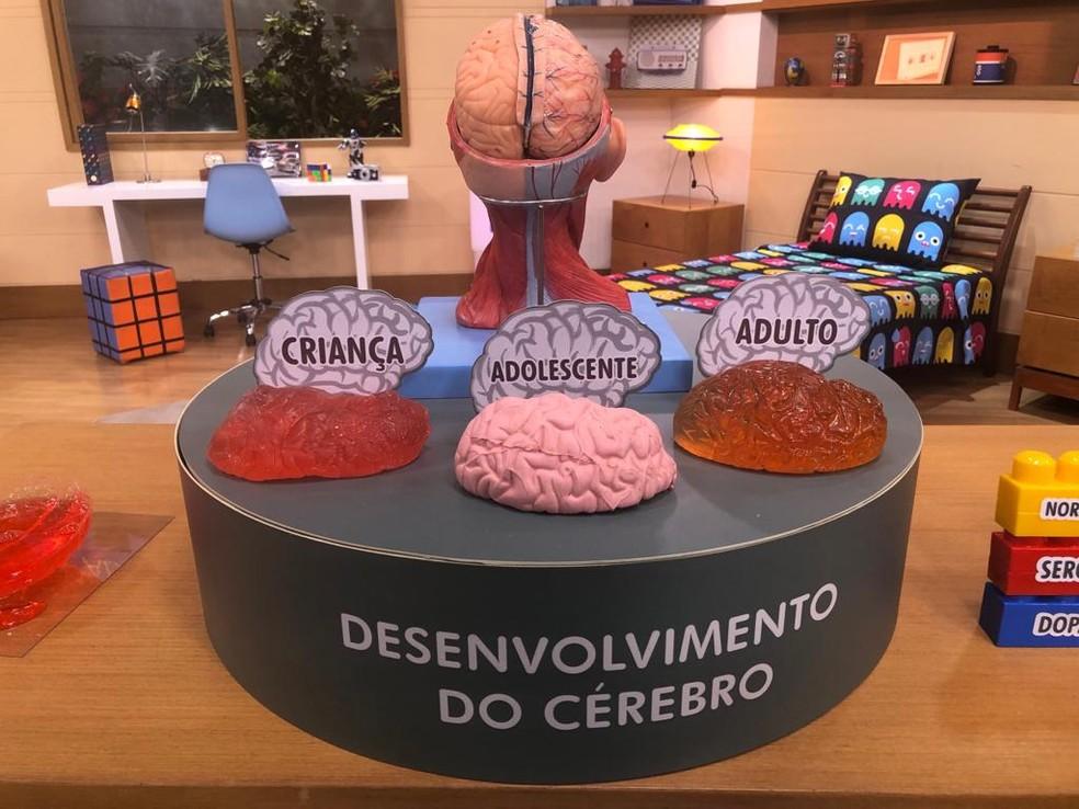 o desenvolvimento do cérebro — Foto: Augusto Carlos/TV Globo