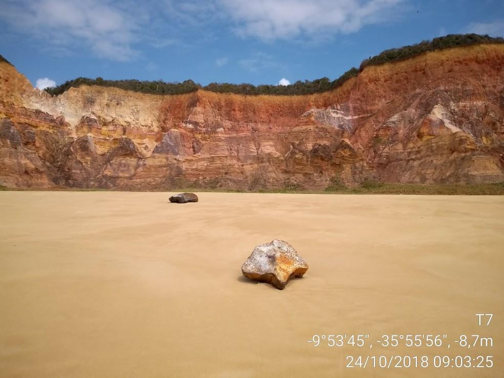 Pacotes já foram encontrados em oito municípios alagoanos — Foto: Divulgação/Instituto Biota