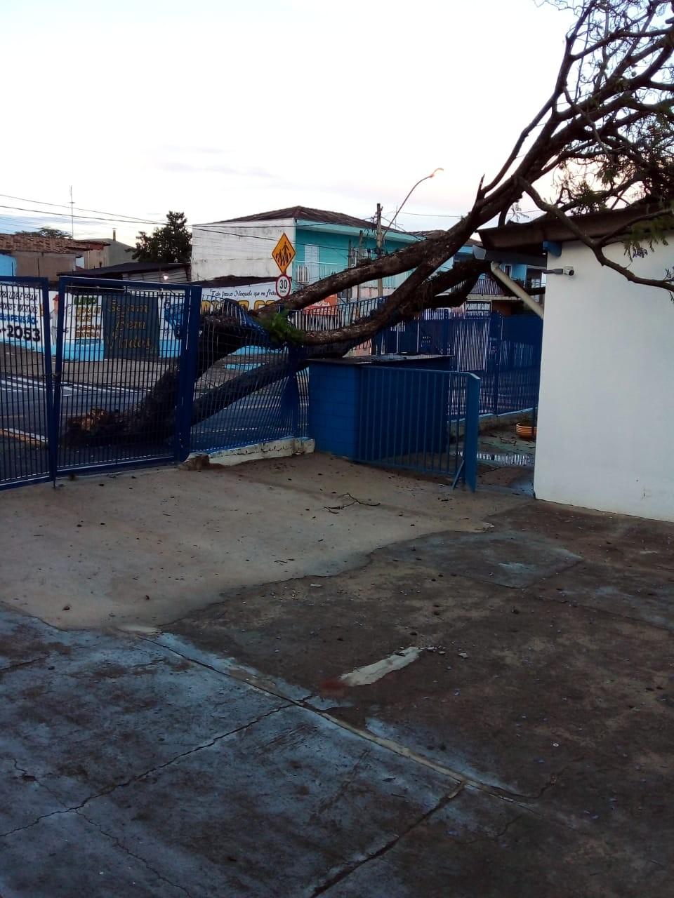 Chuva causa queda de árvores, erosão, alaga vias e afeta rede de energia em Campinas