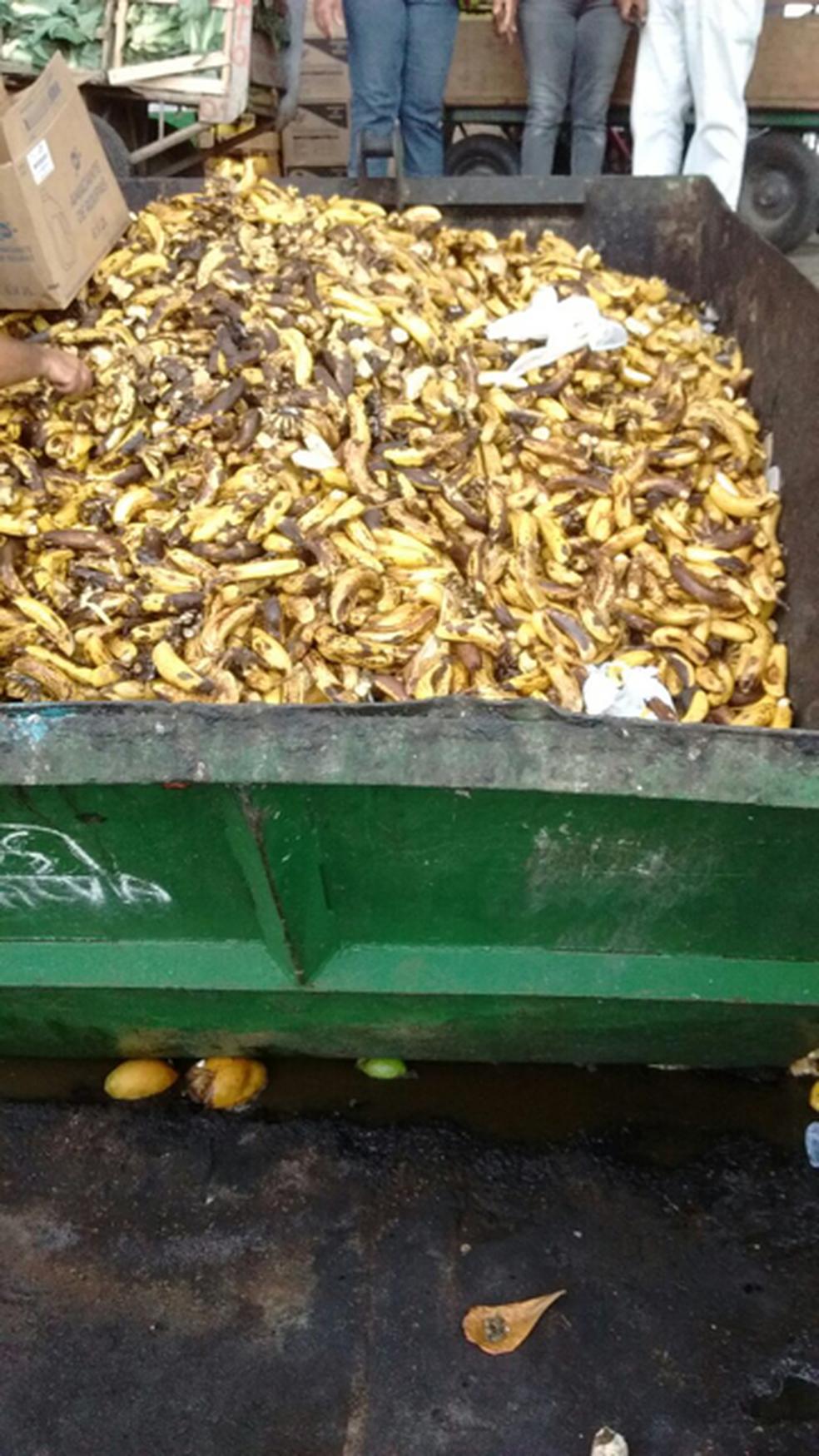 Desperdício de alimentos no Ceasa (Foto: Amelia Gonzalez/G1)
