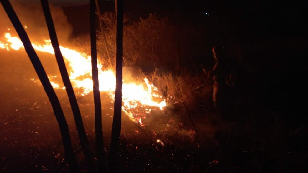 Trabalho de controle às chamas durou pouco mais de 3h — Foto: Divulgação/Corpo de Bombeiros