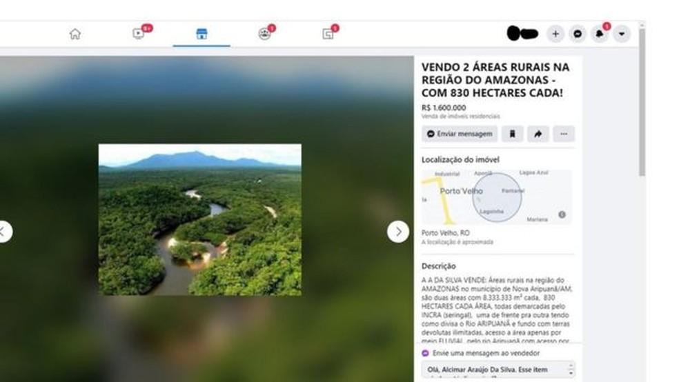 Anúncio oferece áreas de mata dentro da Floresta Nacional do Aripuanã, no Amazonas; florestas nacionais são públicas e se destinam a comunidades tradicionais — Foto: BBC