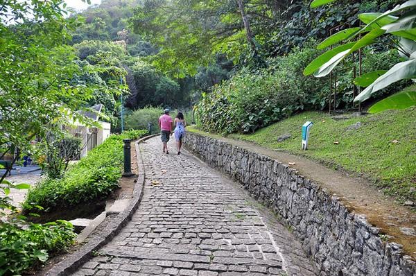 Parque Natural Municipal da Catacumba (Foto: Divulgação)