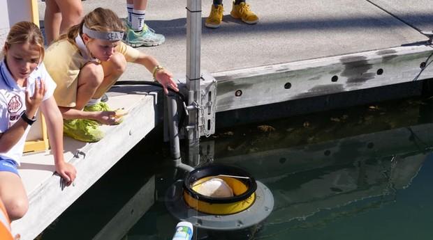 Seabin, lixeira capaz de coletar lixo na água (Foto: Reprodução/Facebook)