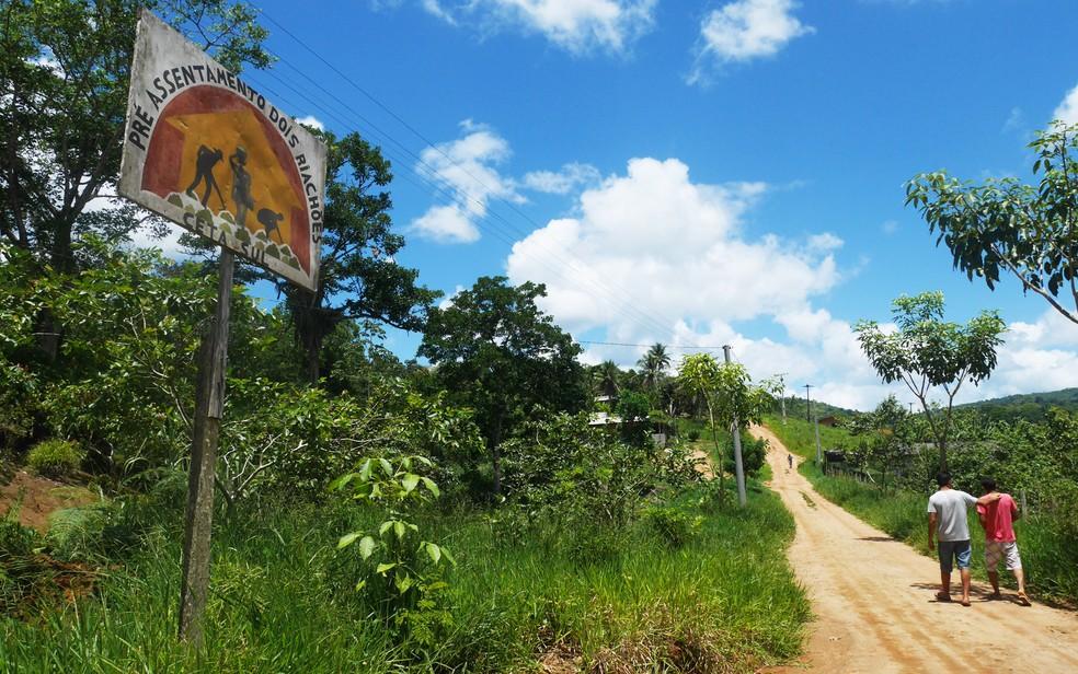 Fazenda Dois Riachões, na Bahia, pertencia a uma grande família de produtores de cacau que não cumpria com os critérios de produtividade impostos pelo governo — Foto: Morgann Jezequel/AFP