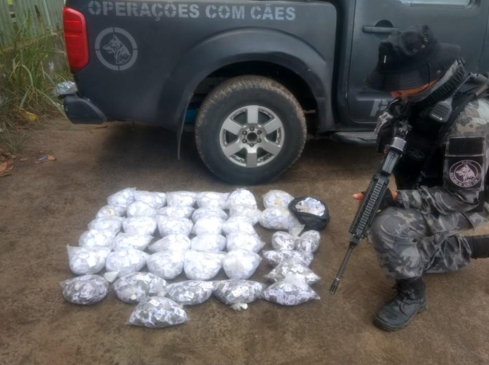 PM apreende drogas em operação na comunidade de Antares, em Santa Cruz (Foto: Divulgação/ Polícia Militar)