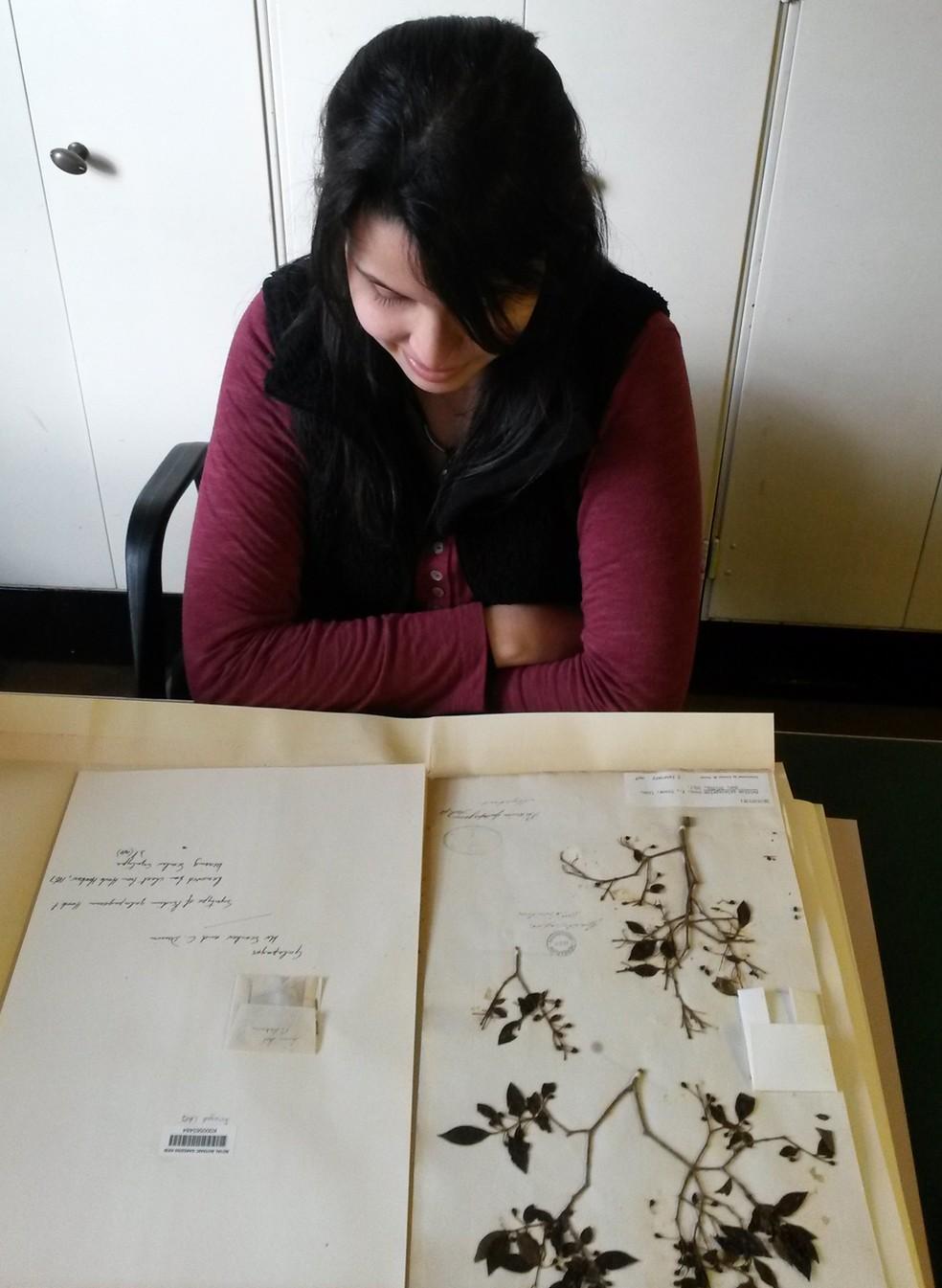 Bióloga mostra espécies catalogadas (Foto: Thaís Vasconcelos/Arquivo Pessoal)