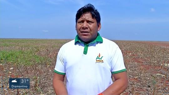 Embargos são suspensos e acordo regulariza a produção agrícola em terras indígenas de MT