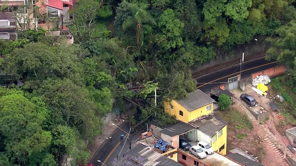 Árvore cai após temporal e interdita Rua Martinho Jacog Cremer, perto da Av. Guarapiranga — Foto: Reprodução TV Globo