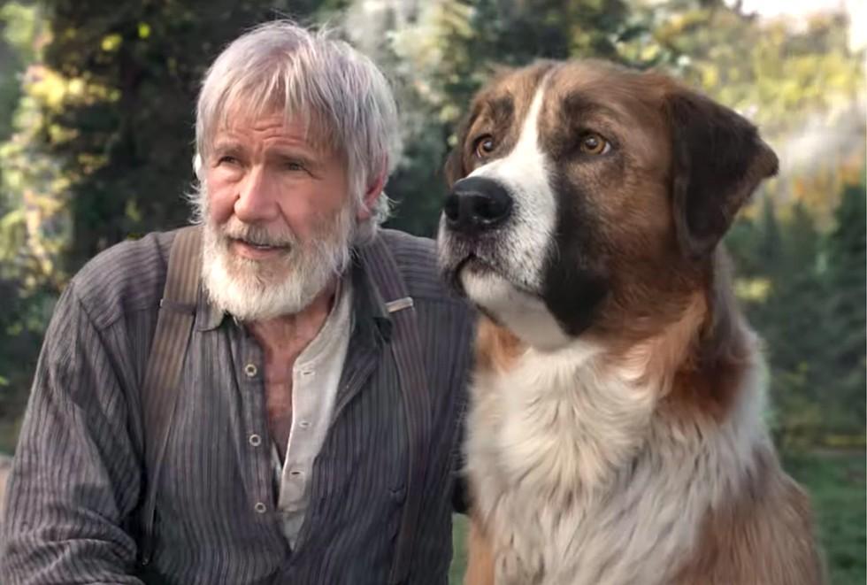 O Chamado da Floresta': aventura com Harrison Ford e cachorro de CGI é entretenimento para toda família - Revista Crescer   Filmes e TV