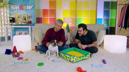 Vídeo Show recebe visita especial da cachorrinha Lola