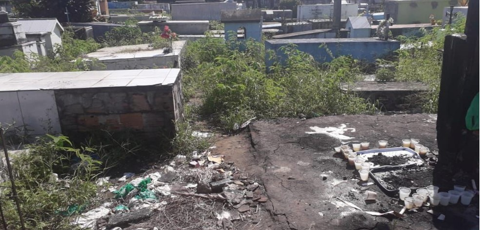 Segundo denuncia, sepulturas foram violadas no Cemitério São João Batista, em Maués — Foto: Divulgação/MP-AM