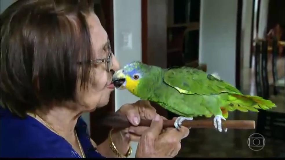 Izaura Dantas e o papagaio Leozinho, em Cajazeiras, PB (Foto: Reprodução/Fantástico)