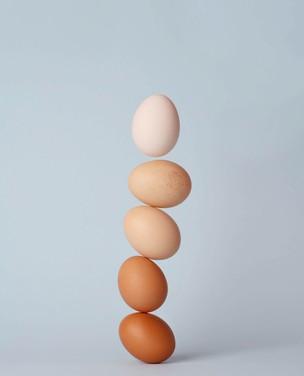 Inove na cozinha com 7 jeitos diferentes de preparar ovos