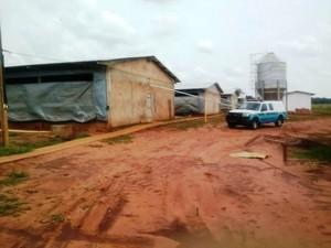 Proprietário foi multado e local foi paralisado em Bandeirantes (Foto: Divulgação/PMA)