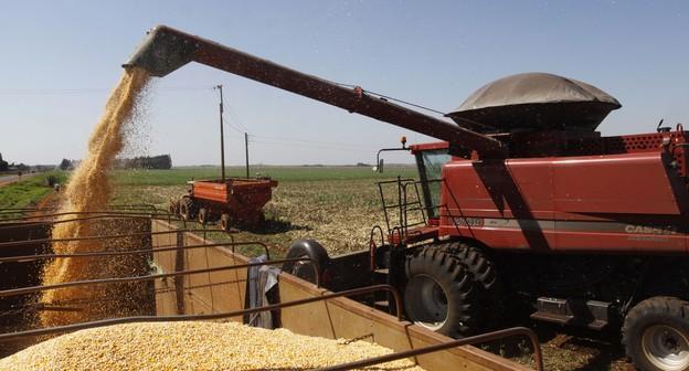 Exportação de milho pode cair mais de 60% em julho após quebra na safrinha