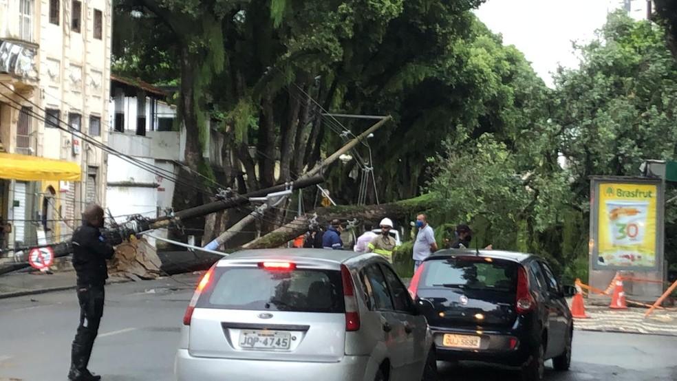 Agentes da Transalvador orientam aos motoristas após árvore cair na região do Campo Grande, em Salvador — Foto: Danilo Ribeiro/TV Bahia